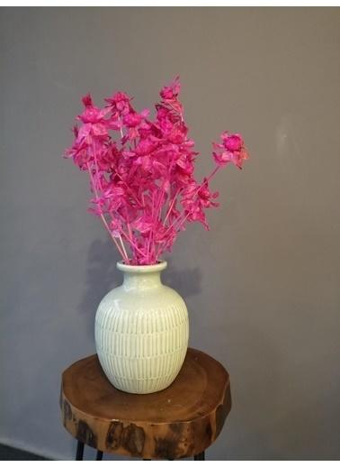 Kuru Çiçek Deposu Aspir Çiçeği (20 Kafa) Pembe, Kuru Çiçek Pembe